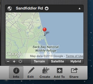Sandfiddler